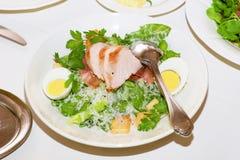 Caesar Romano salad Stock Image