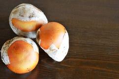 Caesar's mushroom Stock Photos