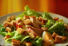 Caesar sałatka z rusks z kurczakiem, serem, sałatką i pomidoru zakończeniem, fotografia stock