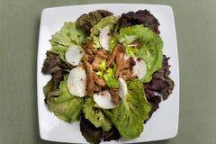 Caesar Salad foto de stock royalty free
