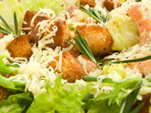 Caesar salad Royalty Free Stock Image