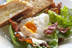 Caesar Salad. Delicious caesar salad, with baby kos lettuce leaves, bacon bits, toasted baguette, a poached egg, shaved parmesan, and a creamy dressing royalty free stock photo