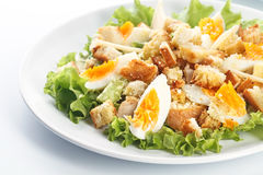 Caesar salad. With eggs, lettuce, croutons, parmesan, and chicken breast royalty free stock photography