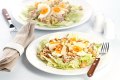 Caesar salad. With eggs, lettuce, croutons, parmesan, and chicken royalty free stock images