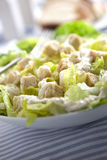 Caesar salad. Close-up served in a white bowl royalty free stock photos