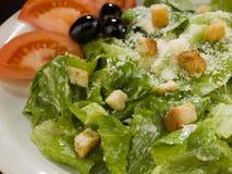 Caesar salad Royalty Free Stock Photography
