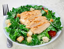 Caesar salad. With chicken breasts royalty free stock image