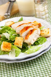 Caesar salad. With grilled chicken Royalty Free Stock Photography