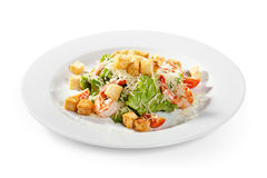 Caesar Salad Stock Photography