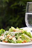 Caesar Salad. Served in a garden setting.  Healthy al fresco dining Stock Photos