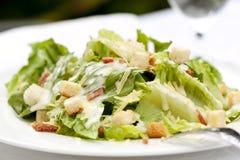 Caesar Salad. Healthy caesar salad, served al fresco royalty free stock photos