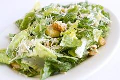 Caesar Salad Royaltyfria Bilder