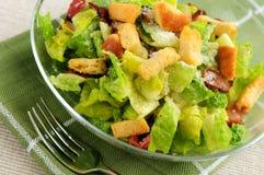Caesar salad Royalty Free Stock Image