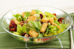 Caesar salad Royalty Free Stock Photos