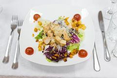Caesar Salad Royalty-vrije Stock Afbeeldingen