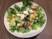 Caesar Salad Royalty-vrije Stock Foto