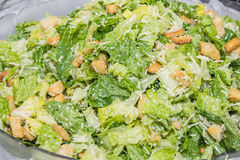 Caesar Salad Photos stock