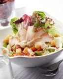 Caesar salad. Bowl of delicious and healthy caesar salad royalty free stock images