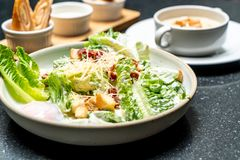 Caesar salad bowl with egg. Healthy food style royalty free stock image