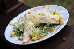 Caesar Salad with chicken Stock Photo