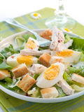 Caesar Salad with Chicken Royalty Free Stock Image