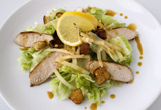 Caesar salad with chicken. A Caesar Salad with shredded parmesan cheese, croutons and chicken Stock Image