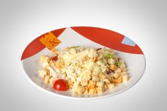 Caesar salad with chicken Stock Image