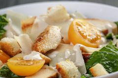 Caesar salad with chicken romain and croutons Royalty Free Stock Image