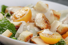 Caesar salad with chicken romain and croutons Royalty Free Stock Photography