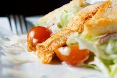 Caesar Salad close-up Royalty Free Stock Photography