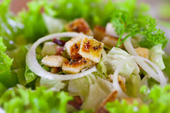 Caesar salad close-up Stock Photography
