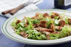 Caesar salad closeup Royalty Free Stock Photo