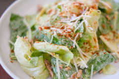 Caesar salad closeup Stock Images
