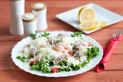 Caesar Salad com Omul Fotografia de Stock