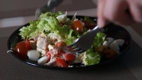 Caesar Salad Cozinheiro chefe que cozinha caesar Processo de cozimento Salada fresca Galinha Caesar video estoque