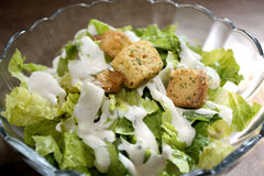 Caesar Salad With Croutons Stock Photography