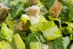 Caesar Salad detail Royalty Free Stock Photos