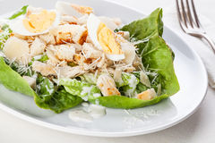 Caesar salad. With eggs and chicken breast royalty free stock photo