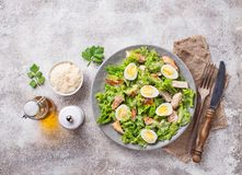Caesar salad with eggs, chicken and parmesan Stock Photos