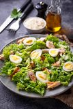 Caesar salad with eggs, chicken and parmesan Stock Image