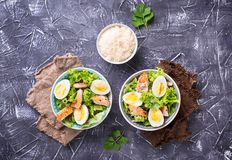 Caesar salad with eggs, chicken and parmesan Stock Photography