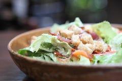 Caesar Salad foto de archivo libre de regalías