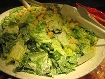 Caesar Salad for Everyone Stock Image