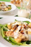 Caesar salad with griddled chicken and lettuce Royalty Free Stock Images