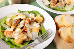 Caesar salad with griddled chicken and lettuce Royalty Free Stock Photography