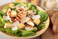 Caesar salad with griddled chicken and lettuce Stock Photography