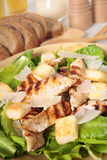 Caesar salad with griddled chicken and lettuce Royalty Free Stock Photo