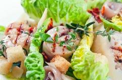 Caesar salad Royalty Free Stock Images