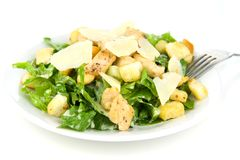 Caesar Salad Isolated on White Stock Image