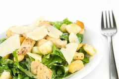 Caesar Salad Isolated on White Royalty Free Stock Photo